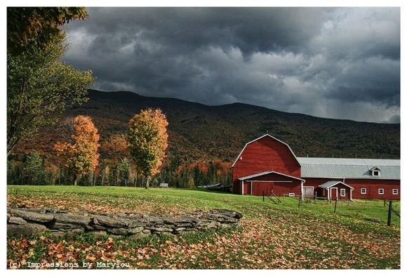 Vermont 9